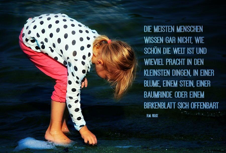 Zitat_Steine