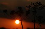 Zauberhafter Sonnenuntergang